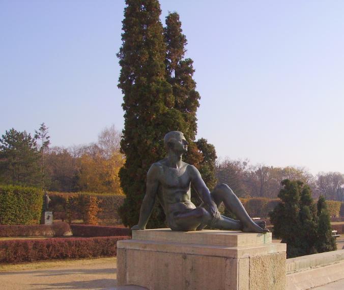 egyetemkert